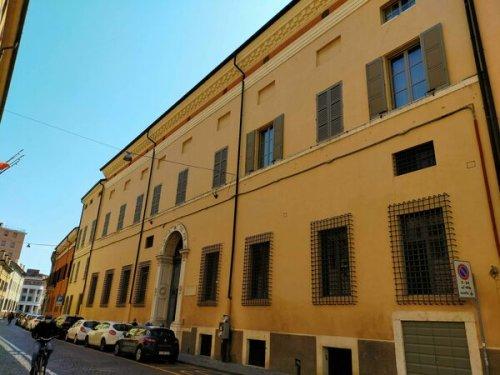 Palazzo Aldegatti's Cat
