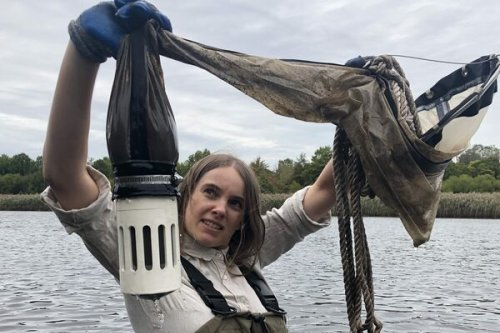 Checking In on the Algae of a Brooklyn Reservoir With a Microbiologist