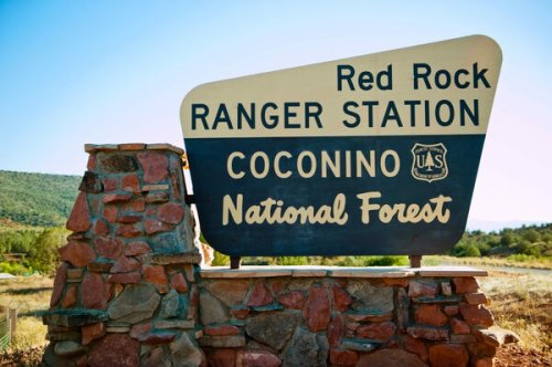 The Unsung Ranger Behind the U.S. Forest Service's Iconic Signs