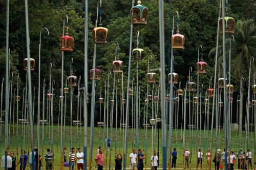 Singapore's Birdsinging Clubs May Help Save Wild Songbirds