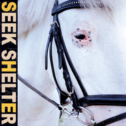 Review: Iceage Turns a New Corner on 'Seek Shelter' - Atwood Magazine