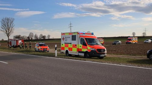 Unfall bei Apfeltrach: Kutsche kippt um - Pferd geht durch