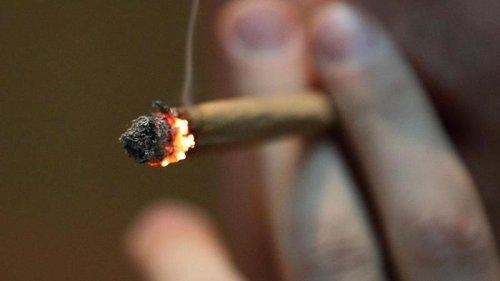 Medizinstrafrechtler: Warum eine Cannabis-Freigabe so riskant ist