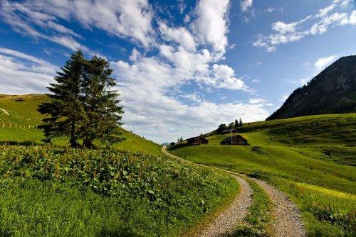 Gesetzlicher Rahmen für Bergwanderführer