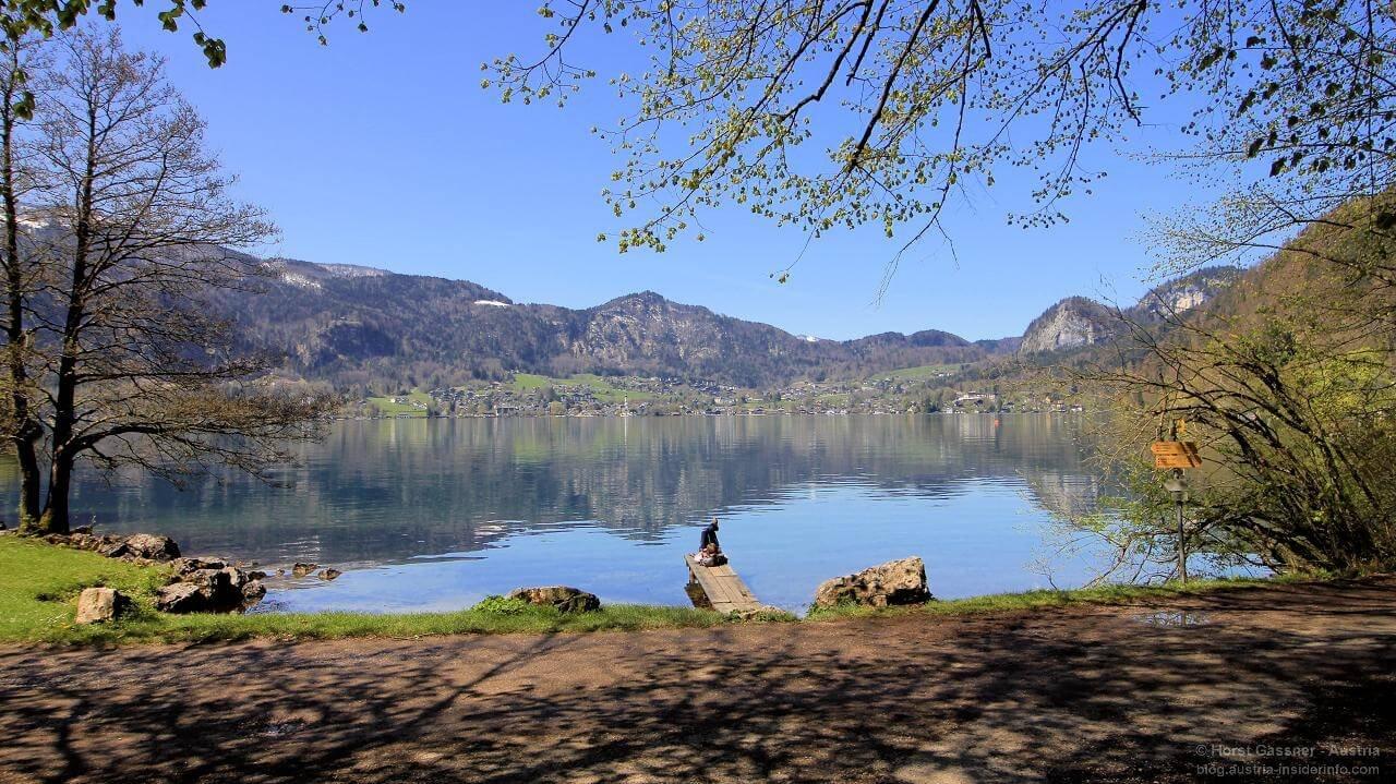 5 geniale Wanderungen am Wolfgangsee
