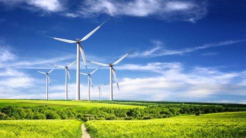 Nachhaltigkeit - Natur & Umwelt cover image