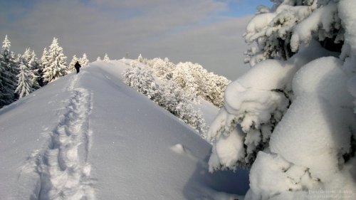5 Tipps zum Fotografieren im Winter [Infografik] | Austria Insiderinfo