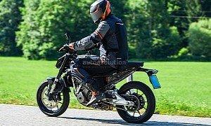 New KTM Duke Prototypes Look Like Quick Ponies in Fresh Spyshots