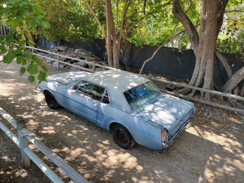 1965 Ford Mustang Traded in to a Dealer Spent 25 Years in Storage, Started Right Up