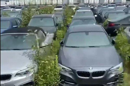 Plus de 3000 BMW et Mini neuves abandonnées depuis 6 ans !