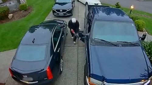 Vidéo : ces voleurs s'emparent d'un pot catalytique en 30 s !