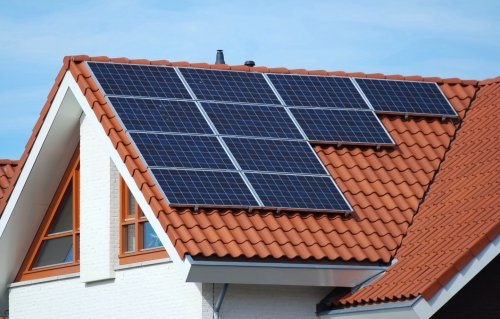 Are Solar Co-ops the Future of Clean Energy? | Avocado Magazine