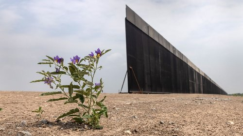 Biden administration unveils plans for Trump's border wall funds