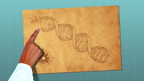 Diving into the genome's uncharted territories