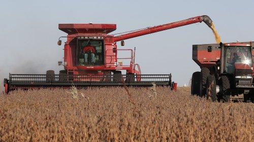 Russian hackers target Iowa farm co-op