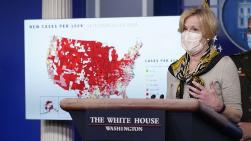Birx: Trump White House could have reduced COVID deaths by 30 to 40%