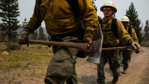 For FEMA head, trip to wildfire regions reaffirms drive to address climate change