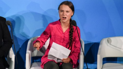 """Greta Thunberg criticizes """"loopholes"""" in climate commitments at Biden summit"""