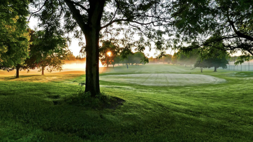 Plan to convert Hiawatha golf course into nine holes dies, for now