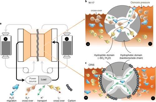 Membrane design prevents crossover in polysulfide redox flow batteries