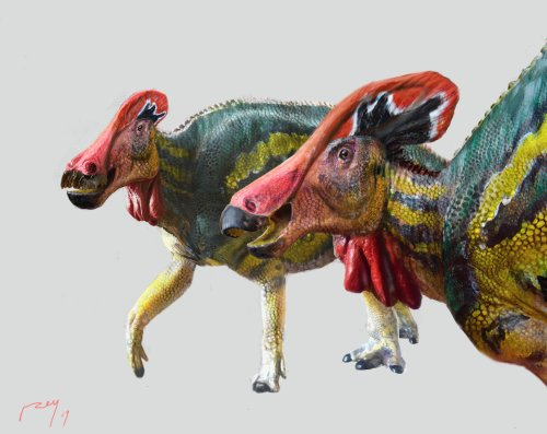 Mexican paleontologists identify new 'talkative' dinosaur species