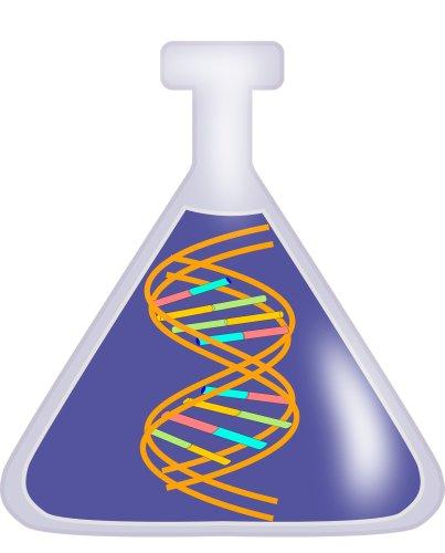 Biology SL 2020 - cover