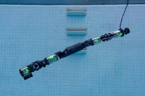 Biorobotics lab builds submersible robot snake