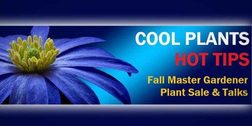 Master Gardener Fall 2021 Plant Sale will be Sunday, Sept. 12