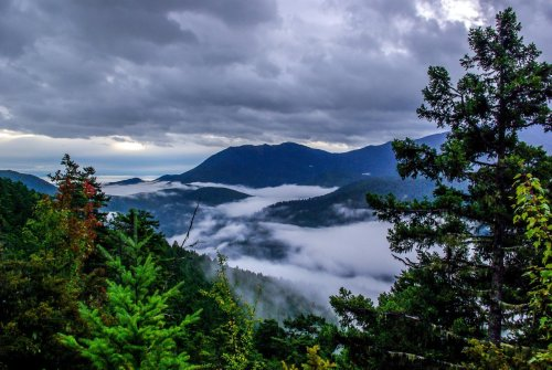 The Hoh Rainforest is One of America's Rainiest—and Greatest—Hikes