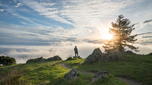 Escape the Bay Area Crowds With These 6 Coastal and Redwood Hikes