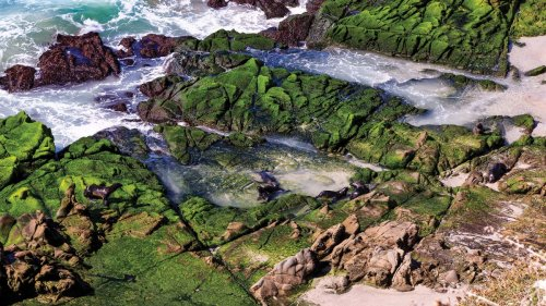 Channel Islands National Park Is a Window Into California's Wild Past