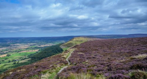 A Walk in The Cleveland Hills and The Lord Stones | BaldHiker
