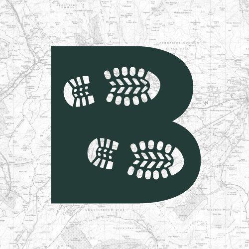 Sanderlings and Dunlins of Crimdon Beach | BaldHiker