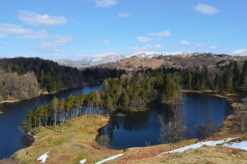 Tarn Hows – An Icon Of The Lakes | BaldHiker