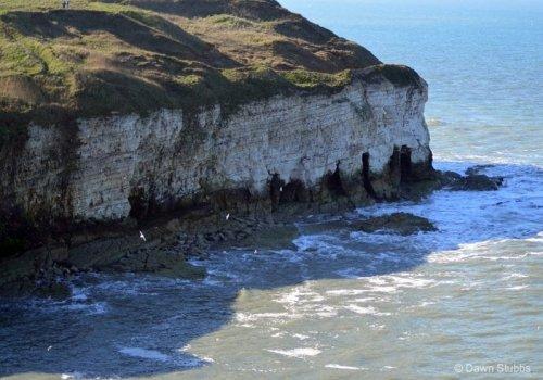 Flamborough Head – Britain's northern chalk sea cliff | BaldHiker