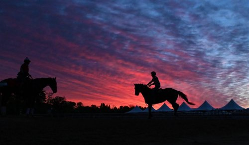 Rainy weather forces Pimlico to cancel Friday's racing   DIGEST