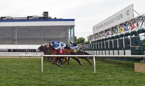Track problems at Laurel Park will shift racing to Pimlico starting next week