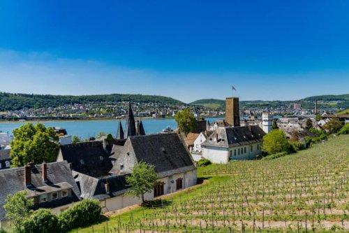 Rüdesheim Sehenswürdigkeiten – 12 Tipps für deinen Ausflug