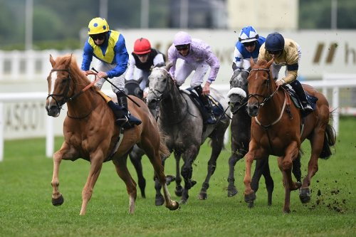 Queen Watches On As Stoute's Dream Of Dreams Sparkles At Royal Ascot