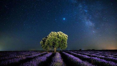 The long-term quest to build a 'galactic civilisation'