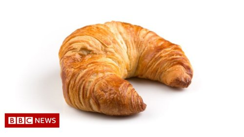 Mystery tree beast turns out to be croissant