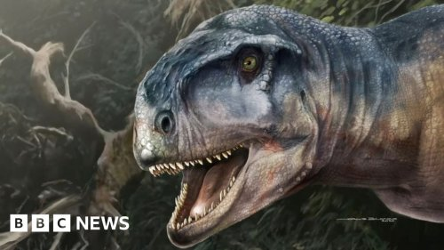 Skull of dinosaur called 'one who causes fear' found in Patagonia
