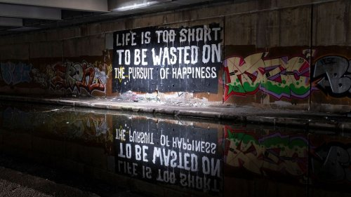 Why our pursuit of happiness may be flawed