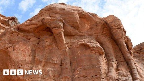 Saudi Arabia camel carvings dated to prehistoric era