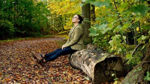 Waldeinsamkeit: Germany's cherished forest tradition