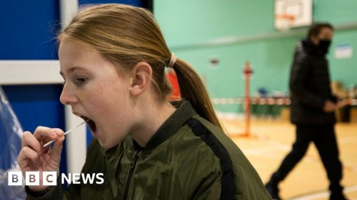 Daily testing can keep pupils in school, study suggests