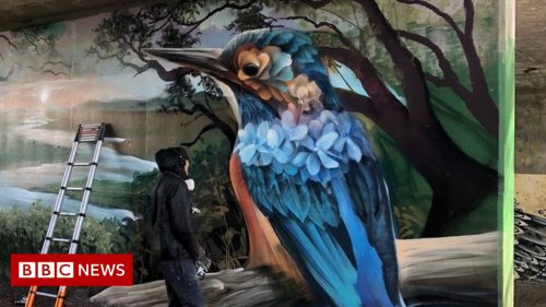 Street artists transform Cheltenham underpass with Kingfishers