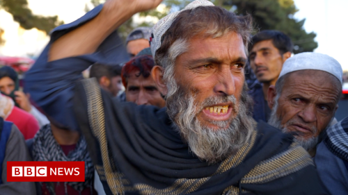 Afghanistan: Fighting off hunger under the Taliban