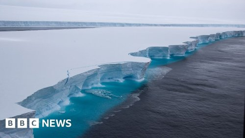 A68: Iceberg that became a social media star melts away