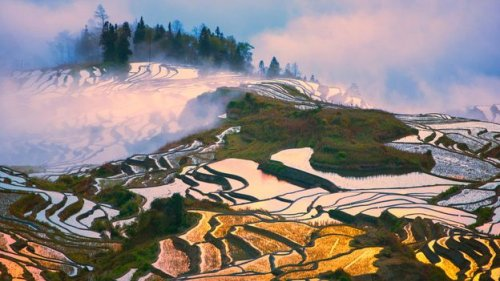 The marvel of China's multi-generational rice terraces